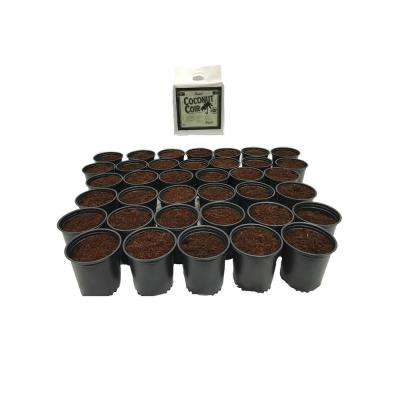 2 Qt. Plastic Nursery Trade Pots with Coconut Coir Growing Media (50-Pack)