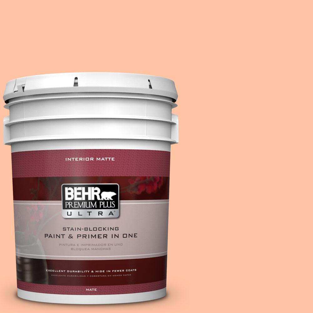 5 gal. #P200-3 Tomorrow's Coral Matte Interior Paint