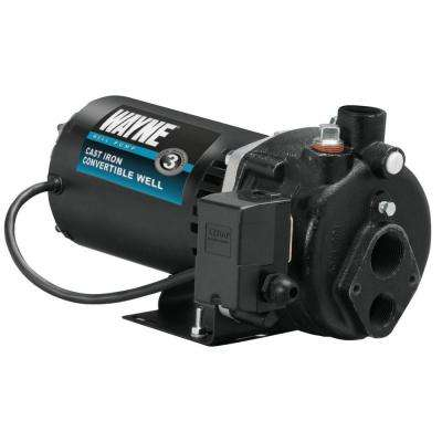 3/4 HP Cast Iron Convertible Well Jet Pump