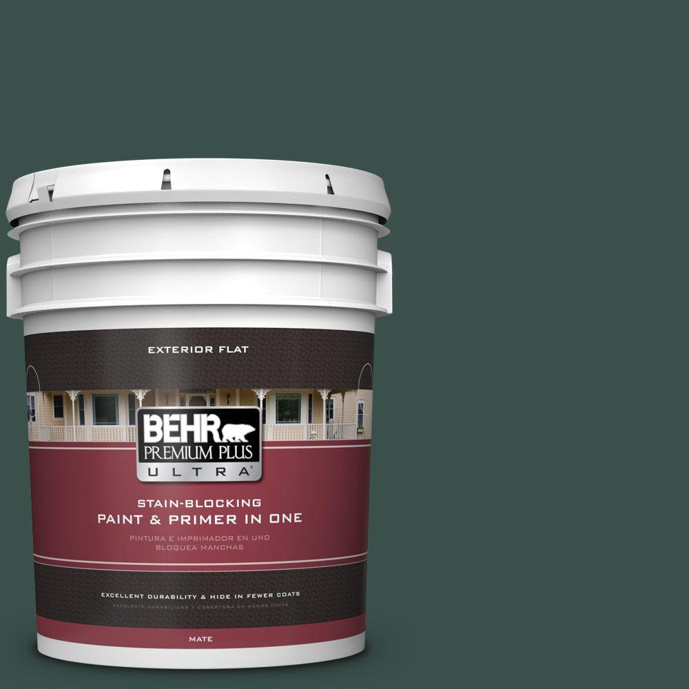 5-gal. #480F-7 Sycamore Tree Flat Exterior Paint