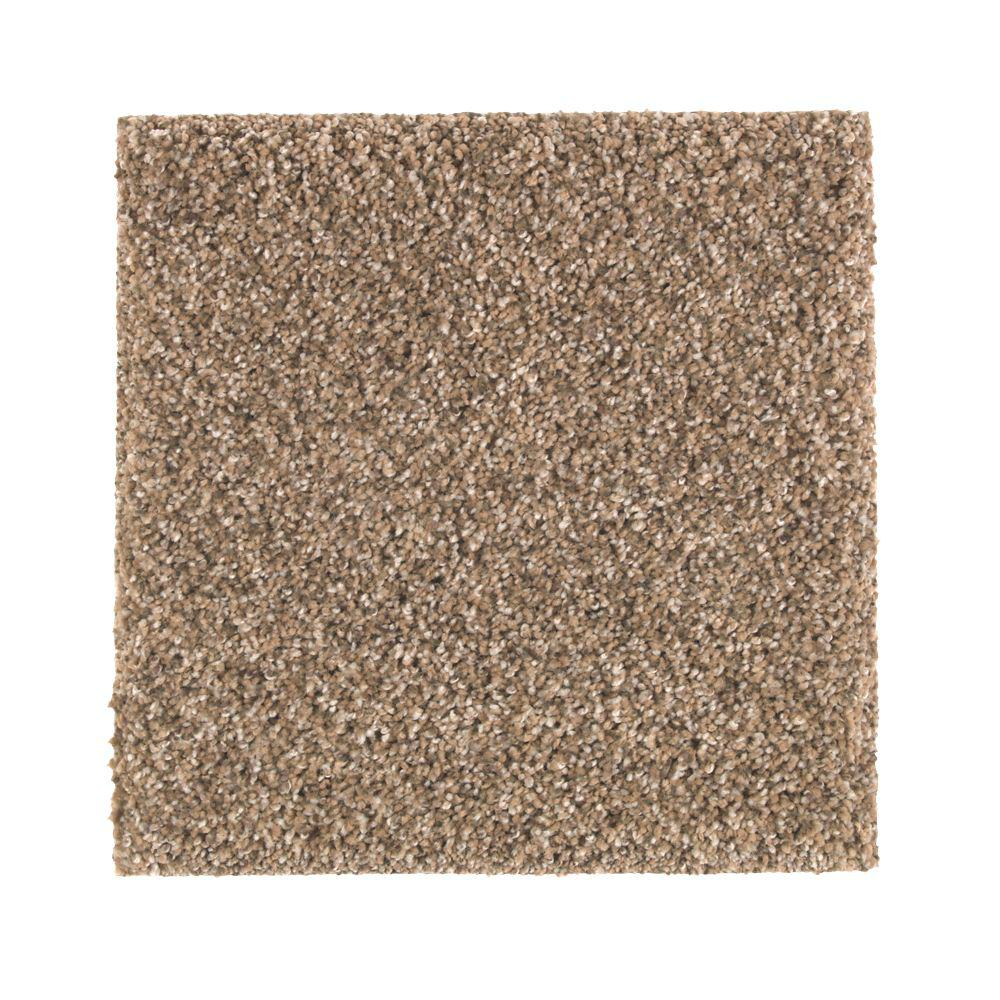 PetProof Carpet Sample - Maisie II - Color Foundation Texture 8 in. x 8 in.