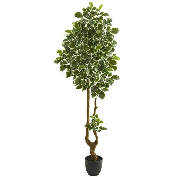 Nearly Natural Indoor 6.5 in. Variegated Aralia Artificial Tree