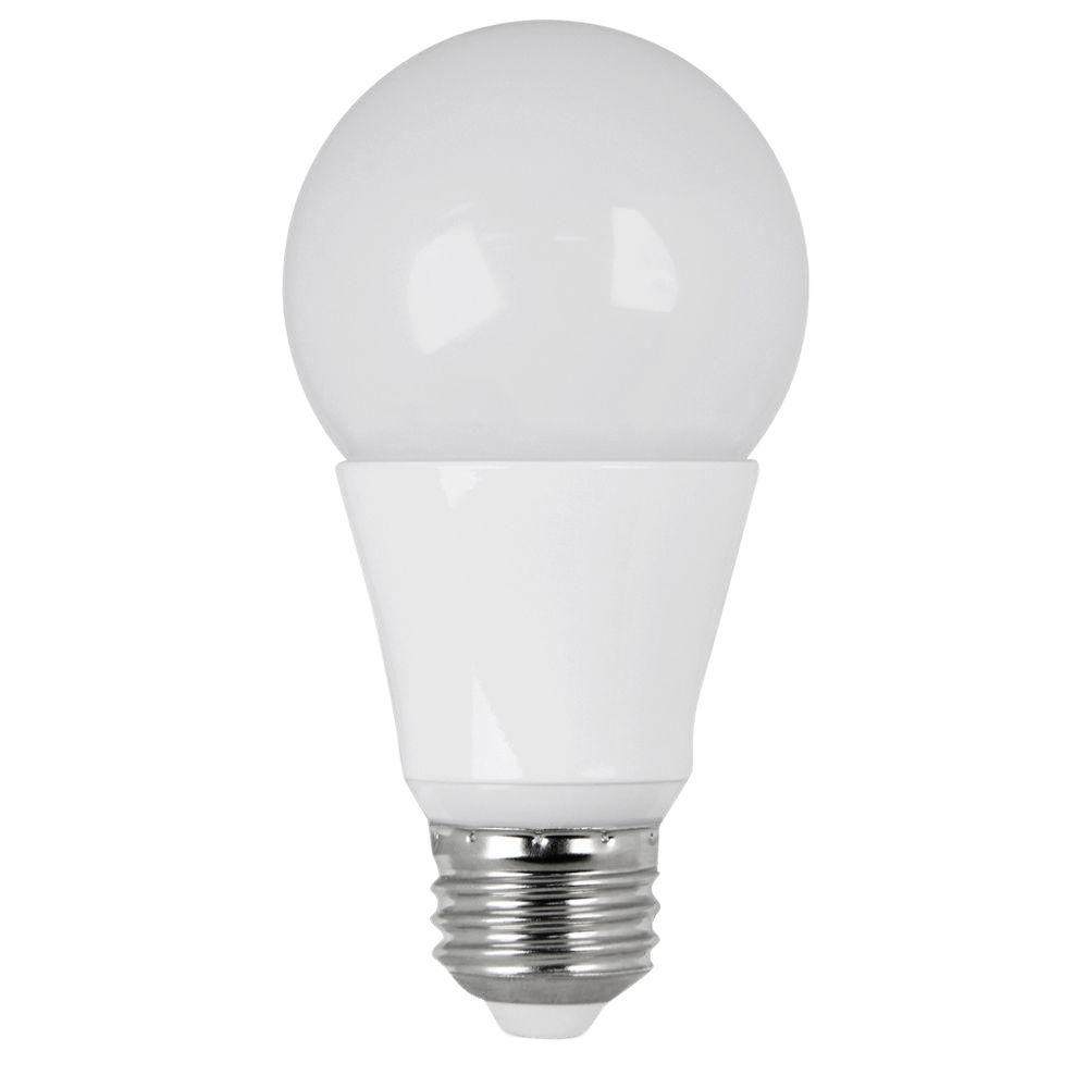 Ecosmart 40w Equivalent Soft White A19 Dimmable Filament: Feit Electric 25W Equivalent Soft White G25 Dimmable Clear