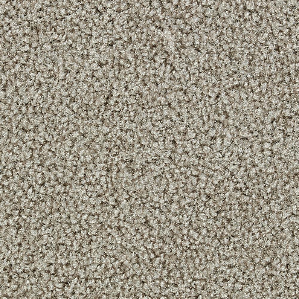 Carpet Sample - Dawson I - In Color Artistic Texture 8 in. x 8 in.