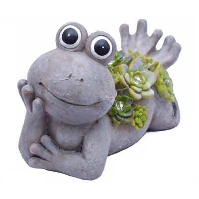 Solar Powered 5-Light 7.3 in. Integrated LED Stone Frog with Succulents