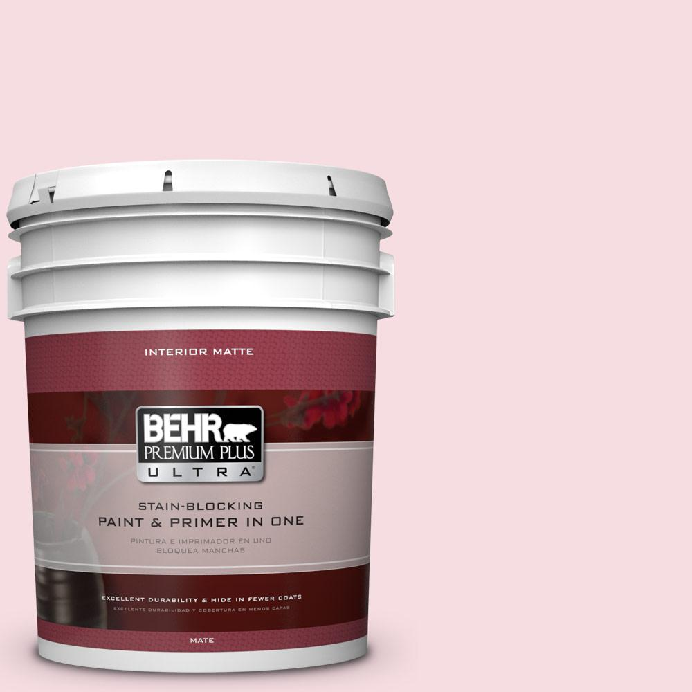 5 gal. #120A-2 Delicate Rose Flat/Matte Interior Paint