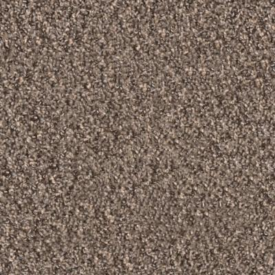 Briley Stroll Twist Residential 18 in. x 18 in. Peel and Stick Carpet Tile (10 Tiles/Case)