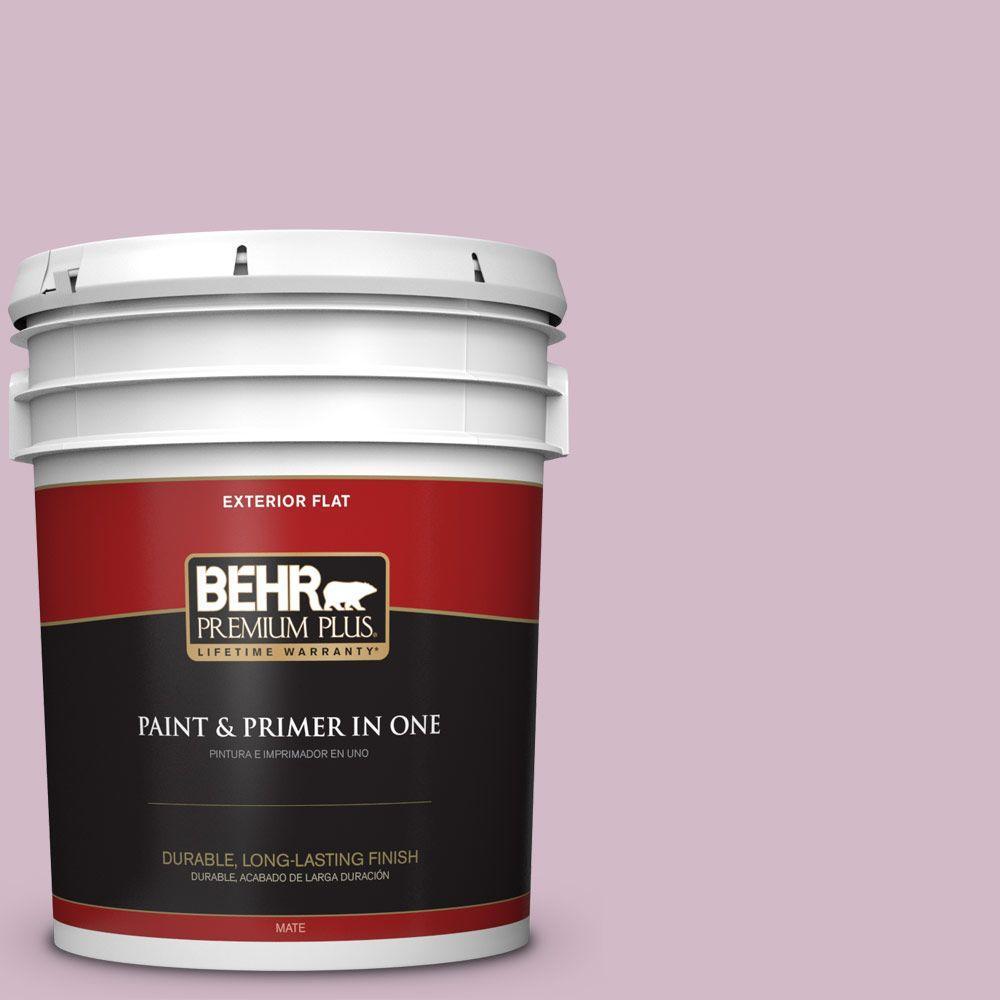 BEHR Premium Plus 5-gal. #T12-16 Queen's Tart Flat Exterior Paint