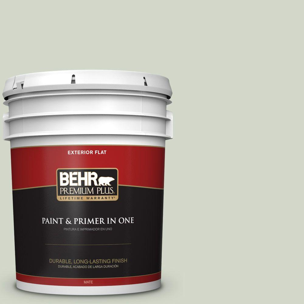 Home Decorators Collection 5-gal. #HDC-CT-25 Bayberry Frost Flat Exterior Paint
