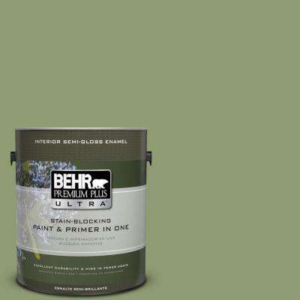 #PPU11-4 Alamosa Green Paint