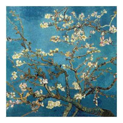 "27.5 in. x 27.5 in. ""Almond Blossoms by Van Gogh "" Wall Art"