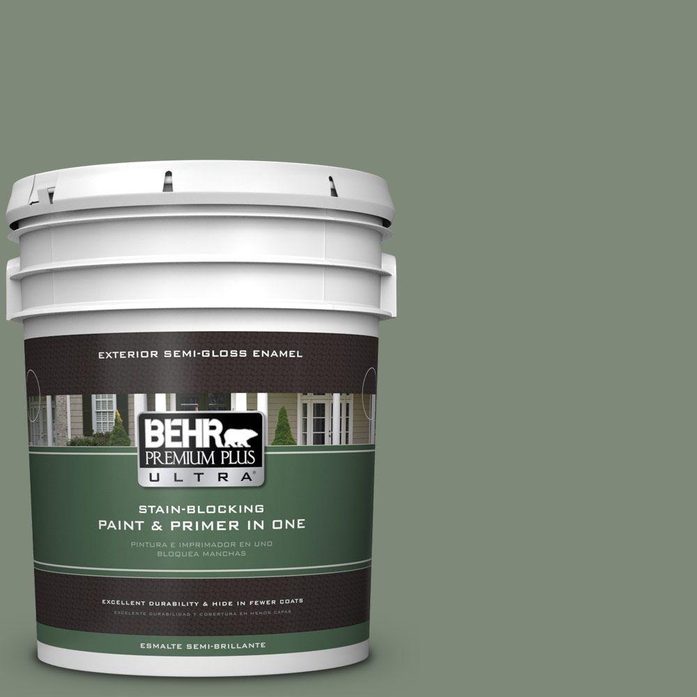 5-gal. #450F-5 Amazon Moss Semi-Gloss Enamel Exterior Paint