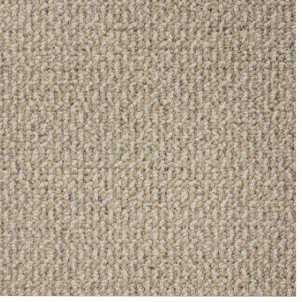 Carpet Sample - Skill Set - Color Stone Loop 8 in. x 8 in.