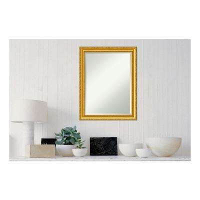 Colonial Embossed Gold Wood 22 in. x 28 in. Traditional Framed Decorative Wall Mirror