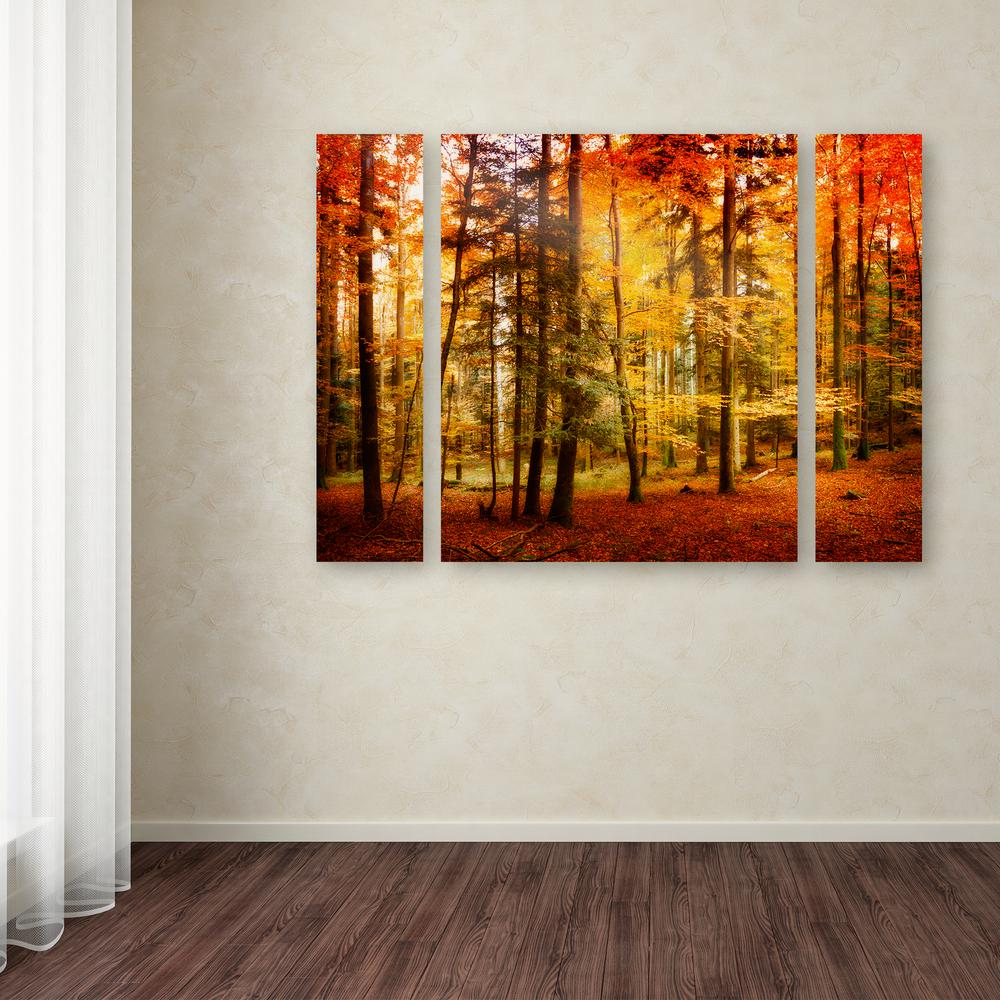 Trademark Fine Art 30 In X 41 In Brilliant Fall Color By Philippe Sainte Laudy Printed Canvas Wall Art Psl0225 3pc Set Lg The Home Depot