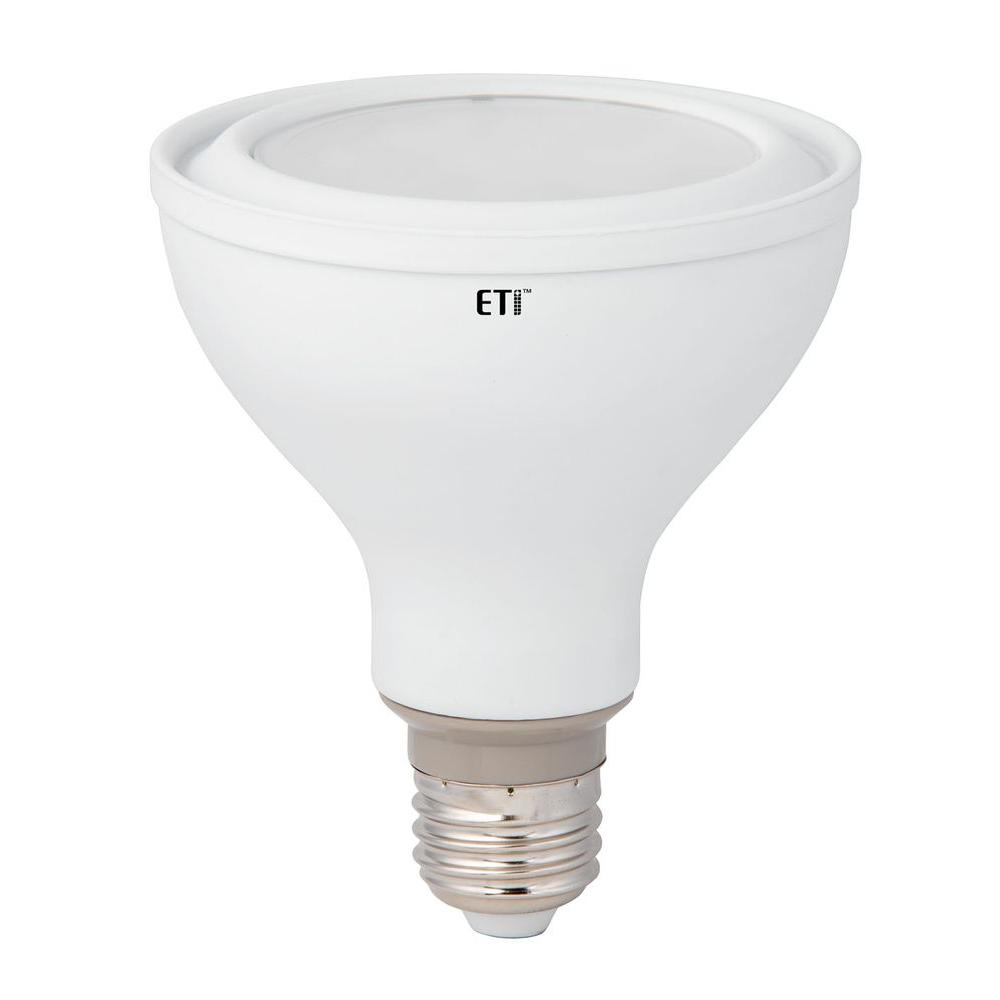 50W Equivalent Warm White PAR30L Flood LED Light Bulb (12-Pack)