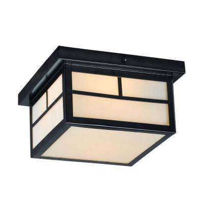 Coldwater 9.25 in. Wide Black 2-Light Outdoor Flush Mount