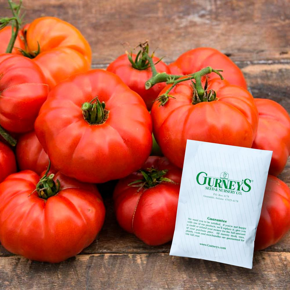 Tomato Gurney's Ruby Monster Hybrid (25 Seed Packet)