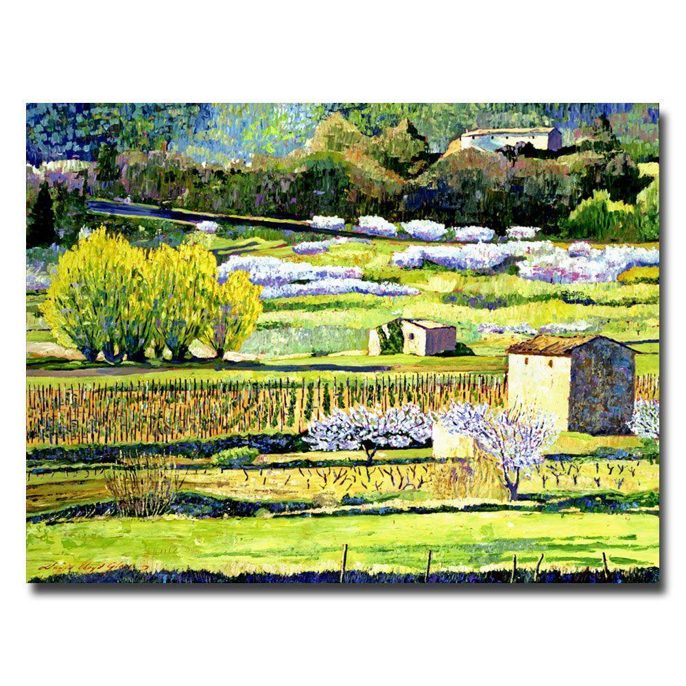 26 in. x 32 in. Bordeaux Vineyards in Spring Canvas Art