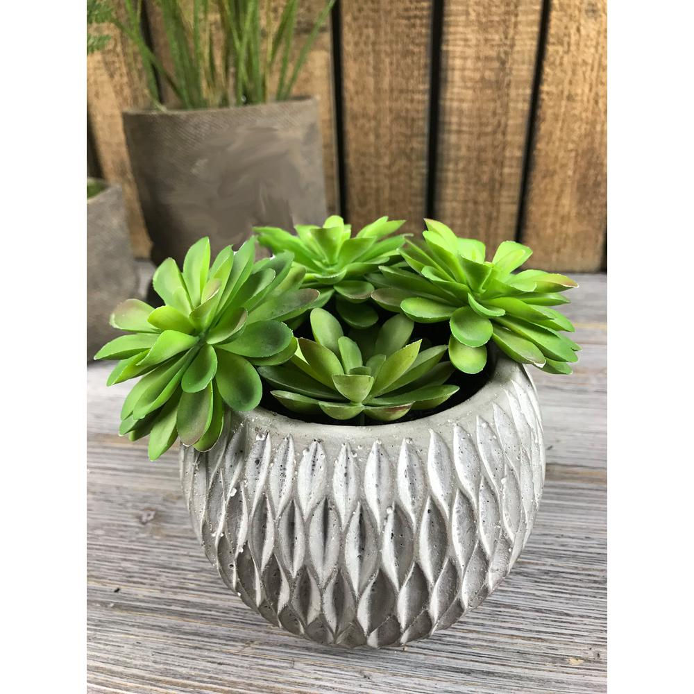 4 in faux succulents in rounded cement pot sd91014am the home depot. Black Bedroom Furniture Sets. Home Design Ideas