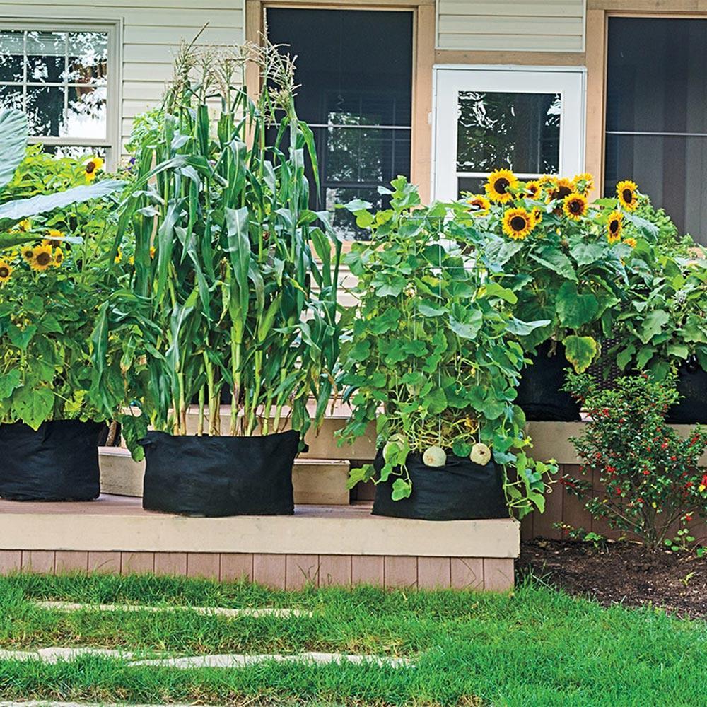 Gardens Alive! 10 Gal. Capacity Expandable Patio Grow Tub