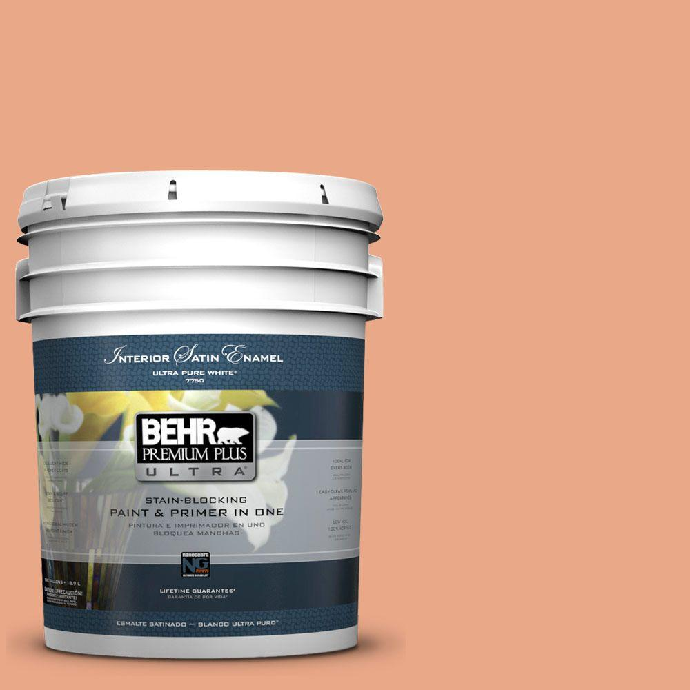 BEHR Premium Plus Ultra 5-gal. #240D-4 Ceramic Glaze Satin Enamel Interior Paint