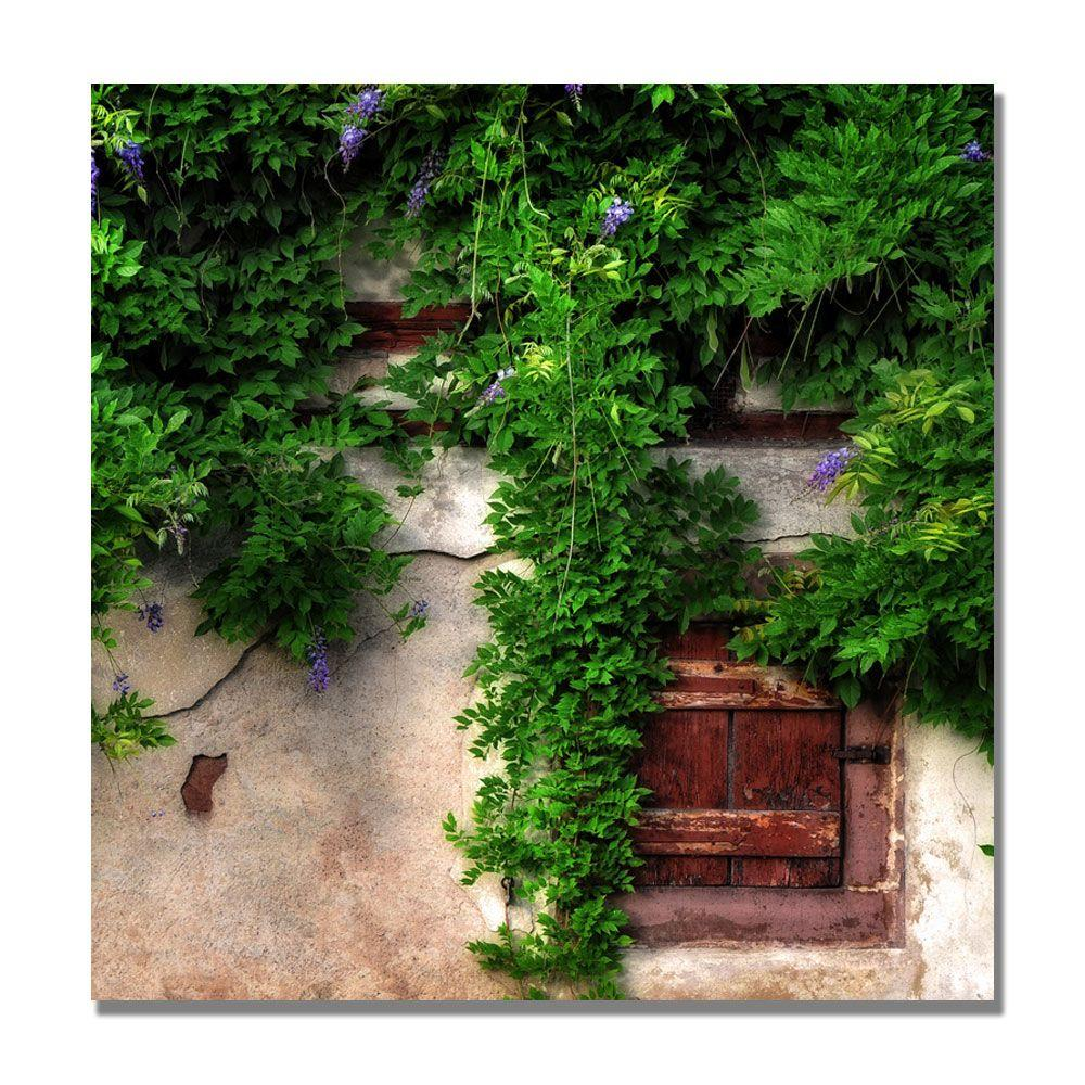 35 in. x 35 in. Glycine Parade Canvas Art-DISCONTINUED