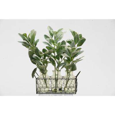 Indoor Grey and Green Lamb Ear Branches in Glass Jars in Metal Holder