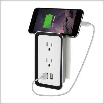 Atomi Plate Power Wall Plate USB Charger/Power Outlet, White