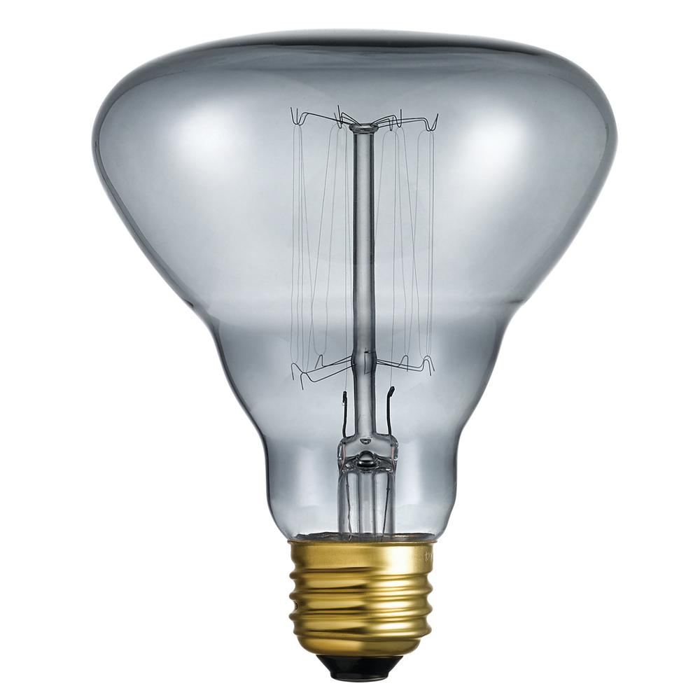 40-Watt Designer Vintage Incandescent Milon Light Bulb