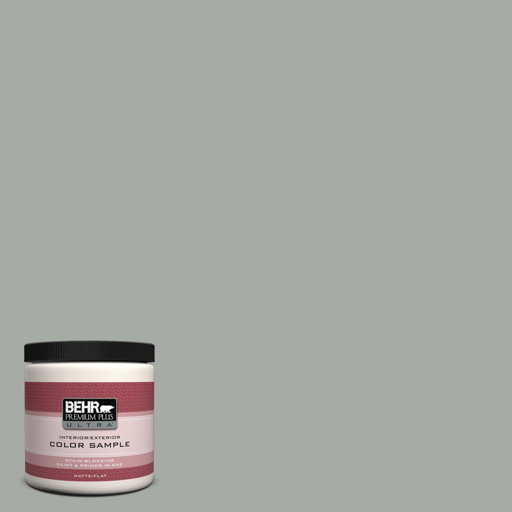 BEHR Premium Plus Ultra 8 oz. #ECC-35-1 Silver Clouds Interior/Exterior Paint Sample