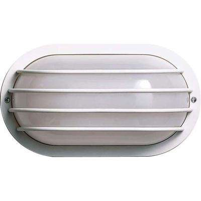 Tony 1-Light White Outdoor Wall Mount Sconce