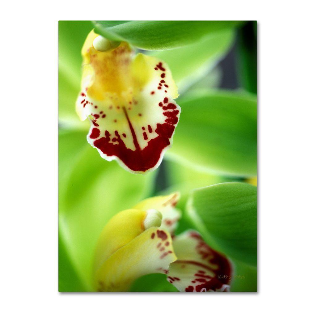 19 in. x 14 in. Cymbidium Seafoam Emerald Orchid Canvas Art