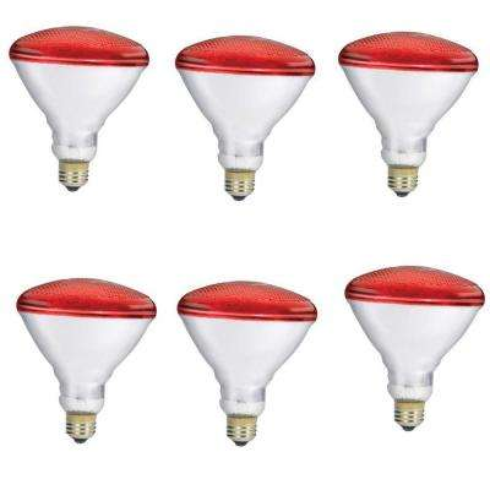 100-Watt PAR38 Incandescent Flood - Red Light Bulb (6-Pack)