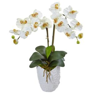 Indoor Double Phalaenopsis Orchid Silk Arrangement in White Vase
