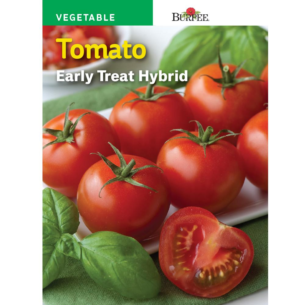Tomato Early Treat Hybrid Seed