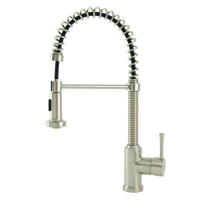 Residential Single-Handle Spring Coil Pull-Down Sprayer Kitchen Faucet in Brushed Nickel