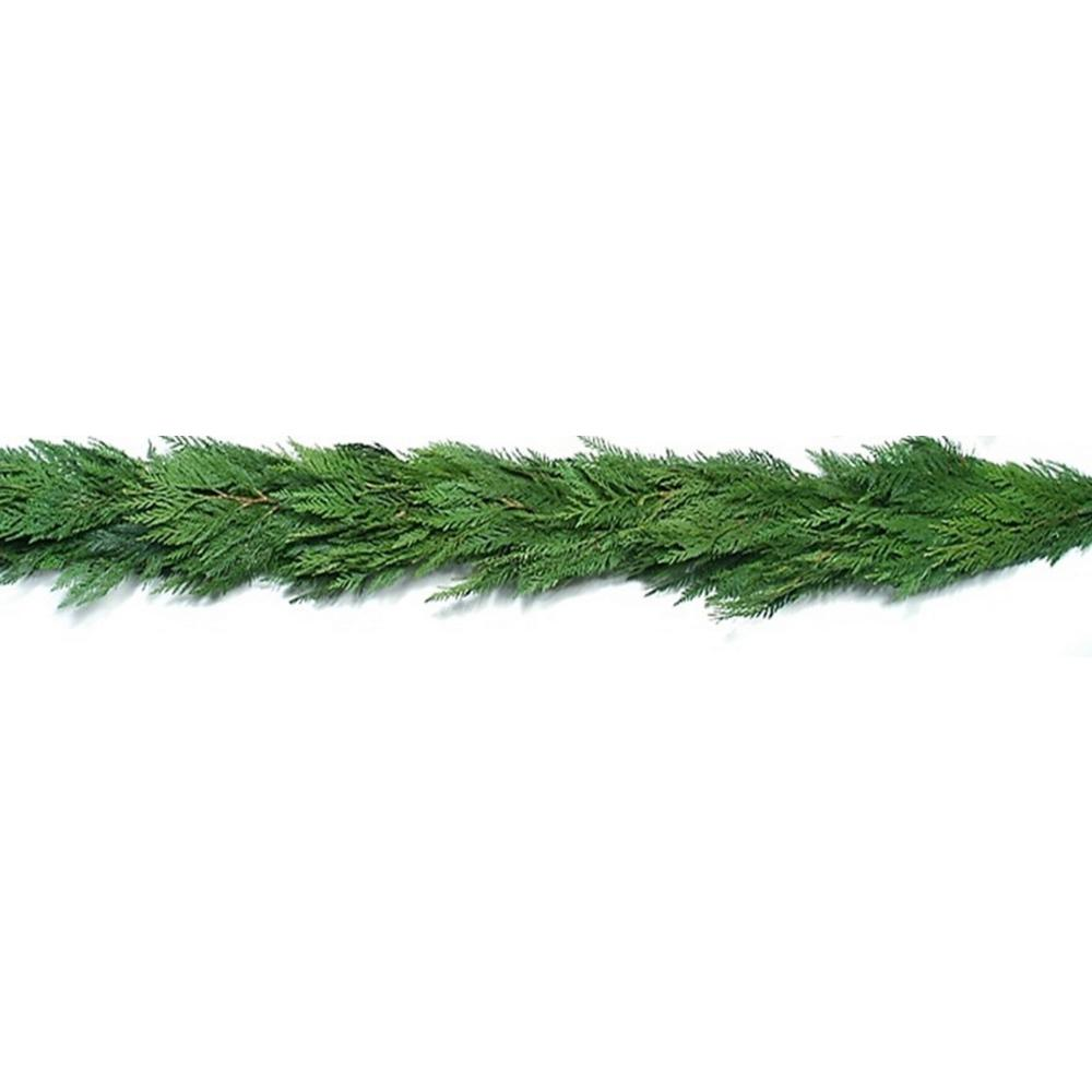 fresh evergreen cedar christmas garland