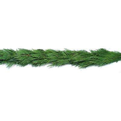 Fresh Evergreen Cedar Christmas Garland (Live)