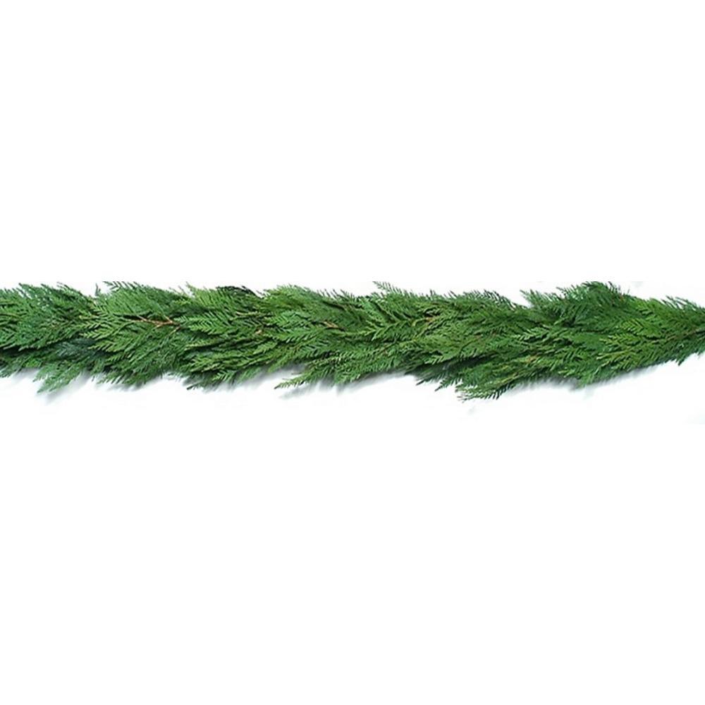 20 ft. Fresh Evergreen Cedar Christmas Garland (Live)