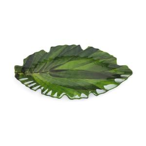 Q Squared Zen 16 inch x 7 inch Melamine Serving Platter in Green by Q Squared