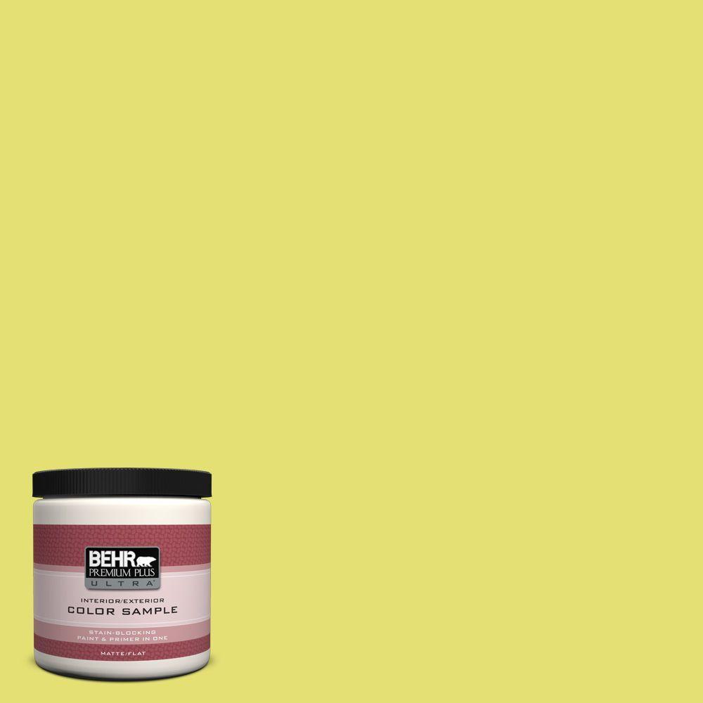 BEHR Premium Plus Ultra 8 oz. #400B-4 Citron Interior/Exterior Paint Sample