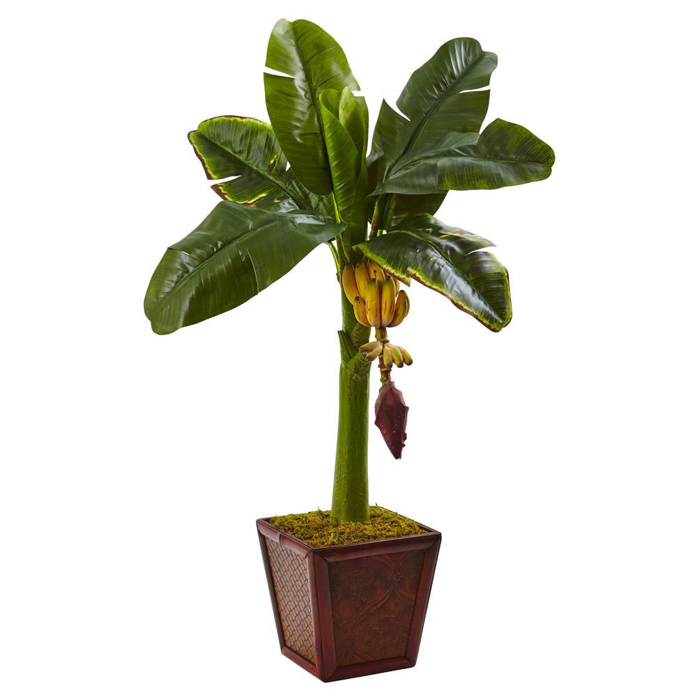3 ft. Banana Tree in Wooden Planter