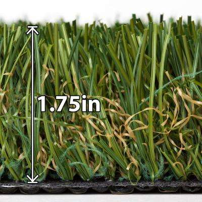 Tundra 5 ft. x 10 ft. Supreme Lawn Artificial Turf