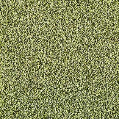 In The Deep Kiwi 19.7 in. x 19.7 in. Carpet Tile (6 Tiles/Case)