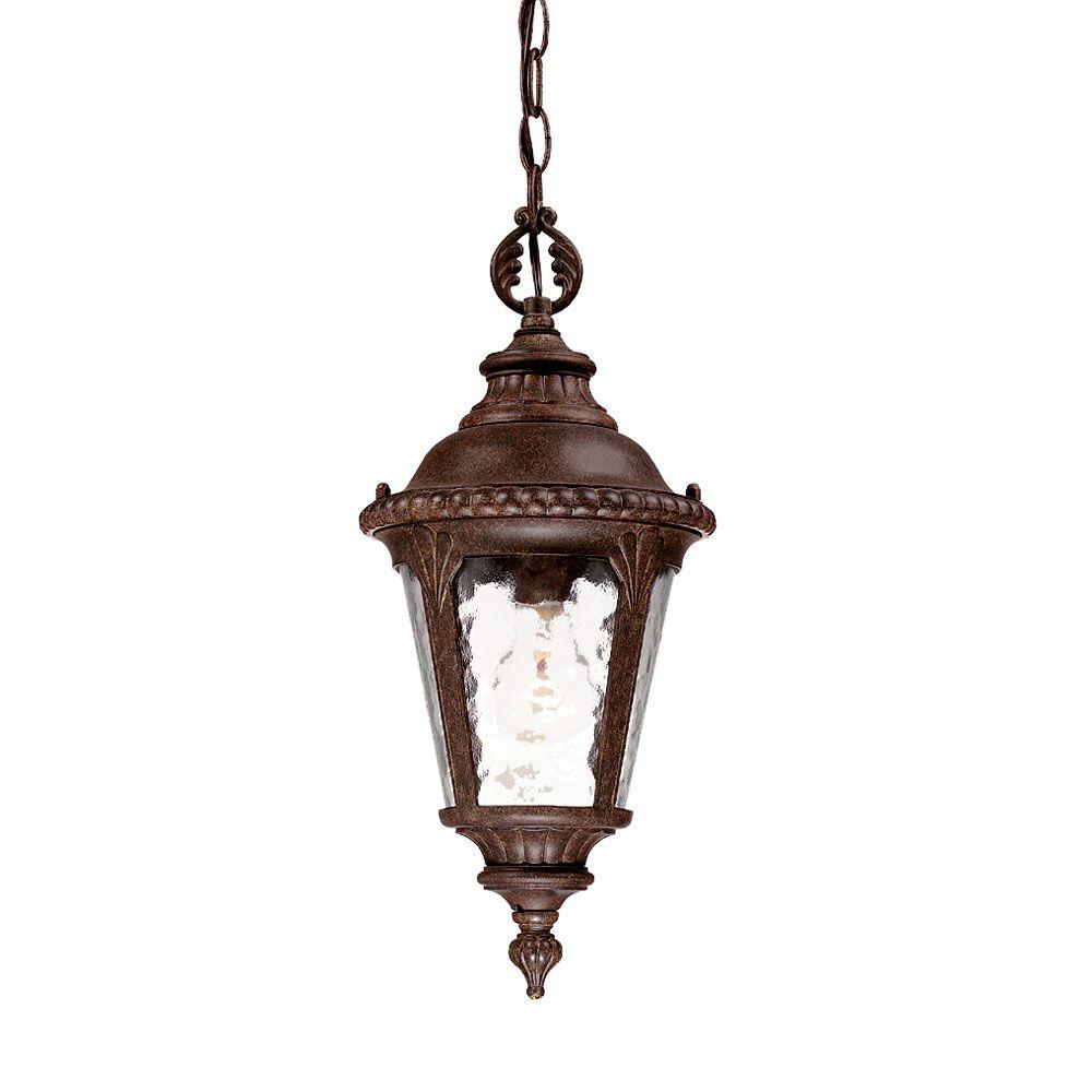 Acclaim Lighting Surrey Collection Hanging Outdoor Black Coral Light Fixture
