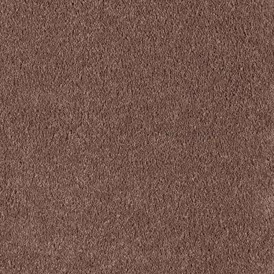 Carpet Sample - Velocity II - Color Colonial Brown Texture 8 in. x 8 in.