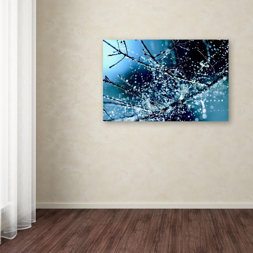 Trademark Fine Art 30 in. x 47 in. ''Blue Rhapsody'' by