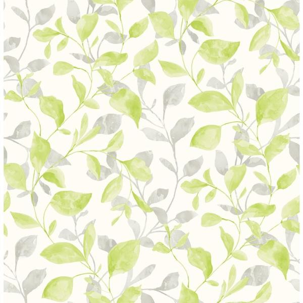 A-Street Catalina Trail Green Vine Wallpaper 2656-004036