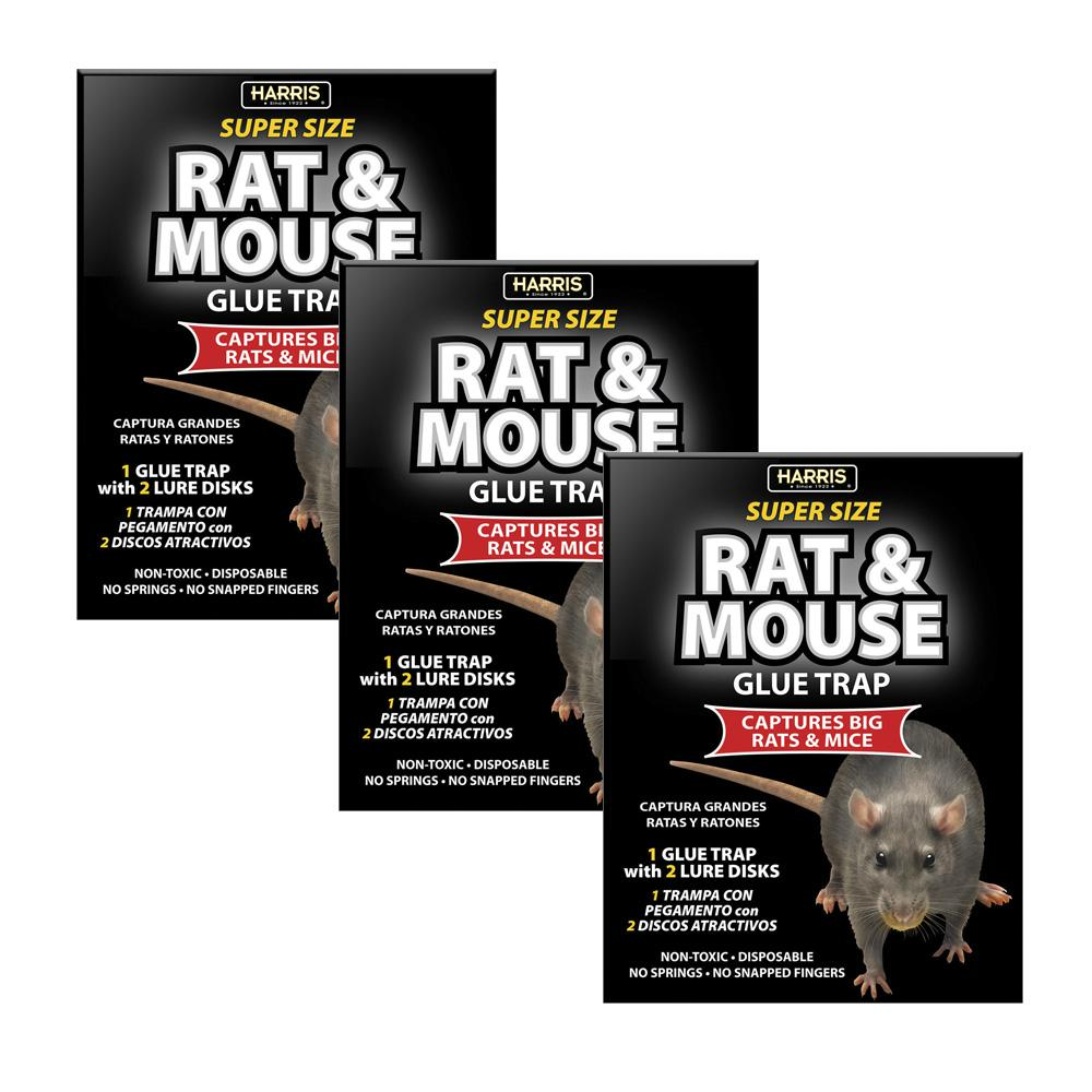 Mice Glue Trap The Home Depot Mouse Pcb Circuit Boardmouse Board Rat And Super Size With Lure 3 Pack